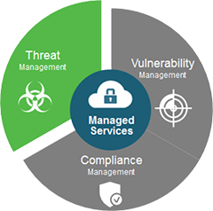 Vulnerability Management Services